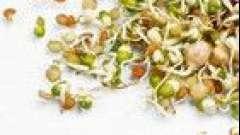 Базове масло - пшеничних зародків (проростків).