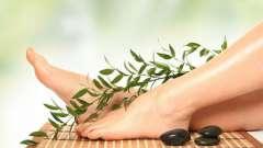 Звабливі ніжки: осінній догляд
