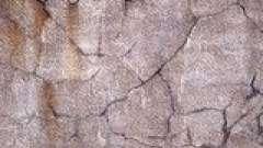 Тріщини на огрубілою і пересушеній шкірі. С. Миргородська